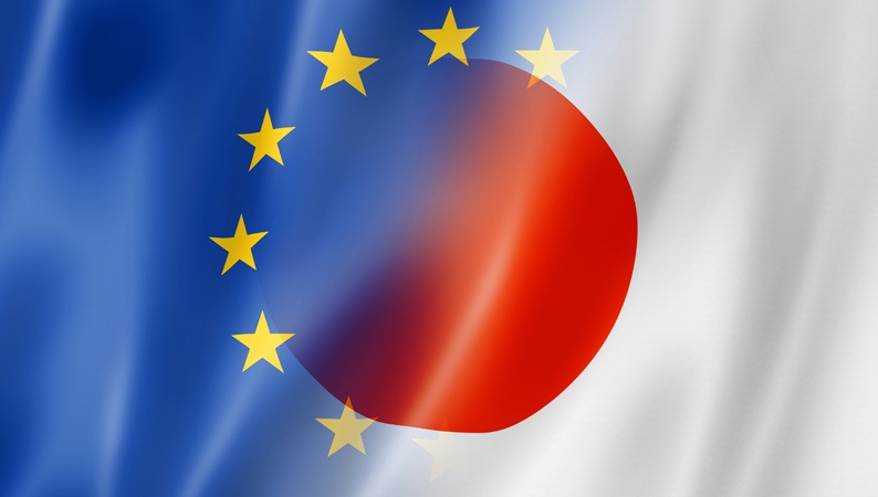 Comparison between opposition systems in Europe and Japan