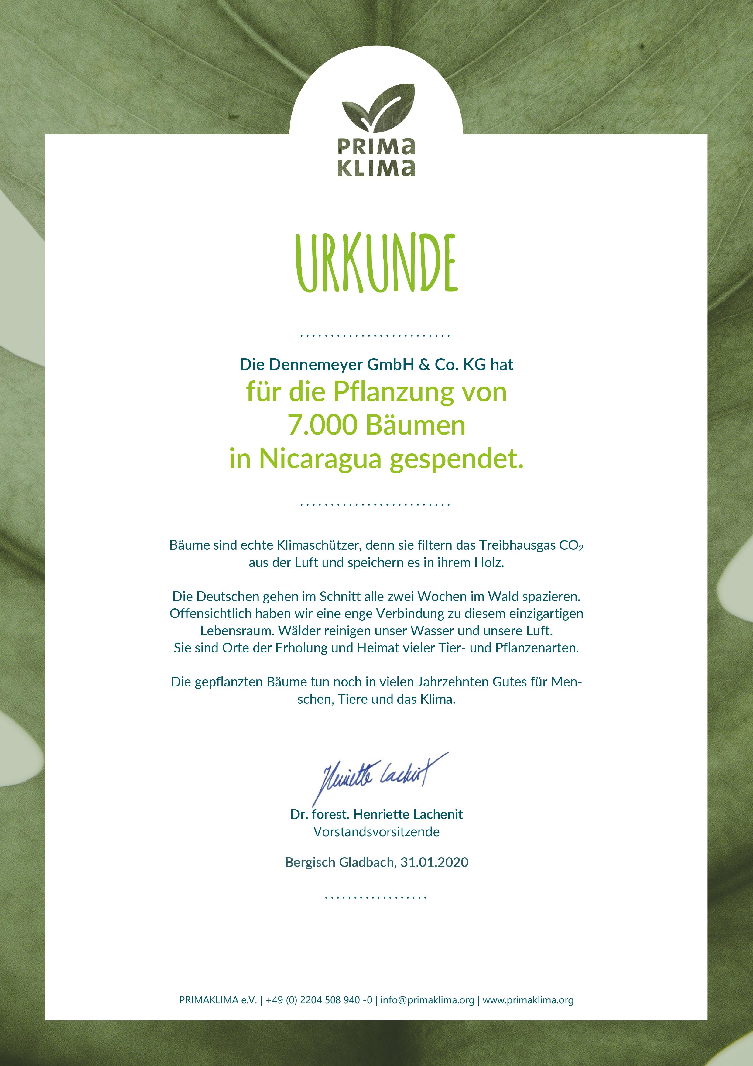 Dennemeyer S Ip Quiz Earns A 20 000 Donation For Global Reforestation
